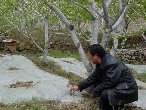 2009汉源58