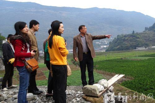 秭归县柑橘良种繁育中心谭勇主任向与会代表介绍中心建设情况