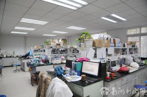 实验室防止了绿色植物,绿意盎然
