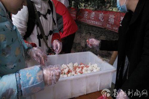 7、公管院武汉市小动物保护协会之行