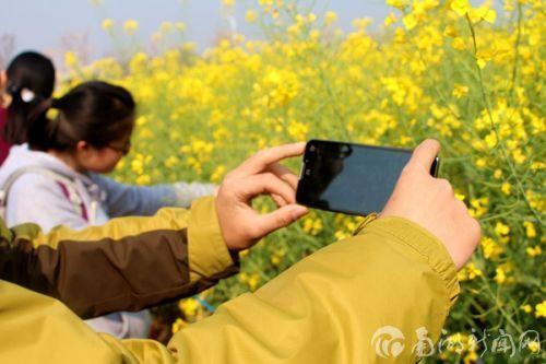 在美丽田地里上课是件幸福的事,忍不住拿出手机记录美景