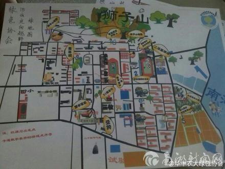 校内定向越野绿地图图片