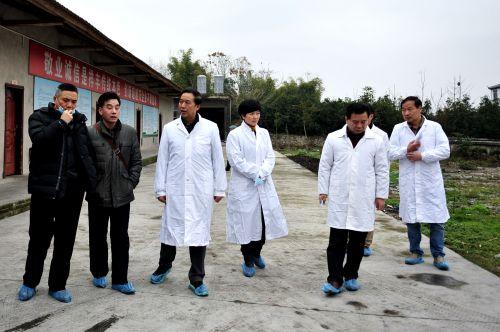 新年行动:学校赴建始县推进精准扶贫工作