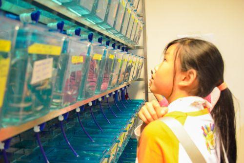小科学家参观鱼房