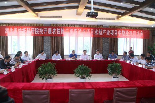 省水稻产业农技推广试点项目验收现场会召开