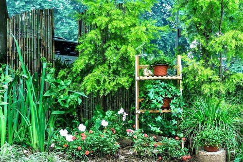 """我校风景园林专业学子""""平地造花园"""""""