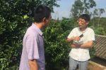 【耕读】学子与岗位科学家同行,赴赣州调研柑橘黄龙病的经济影响