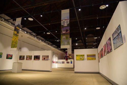 艺术馆摄影展第二篇章展览区,展现五彩花世界