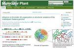 生物信息团队植物基因组进化研究获新进展
