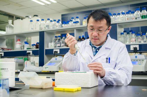 实验室中工作的罗峰老师-梁喻