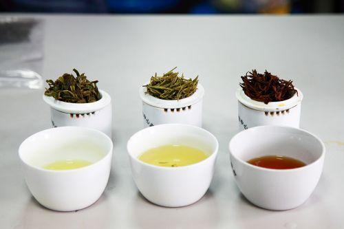 青椒的自制茶PK华农绿针,华农红韵(从左往右)