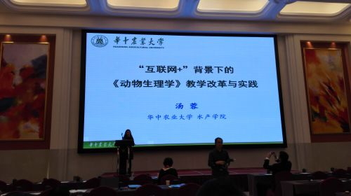 汤蓉在高教论坛作报告