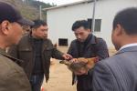 我校专家教授赴黄梅县指导产业扶贫工作