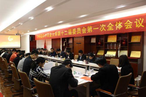 学校第十二届团委会召开第一次全体会议