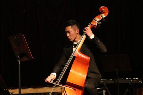重低音提琴手【王丹妮】