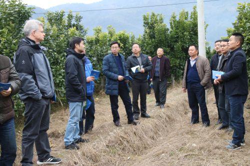 0116在宣恩县正兴白柚专业合作社基地进行现场指导