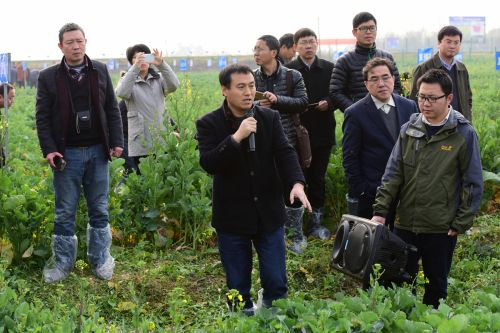 张椿雨教授介绍抗病新品种情况