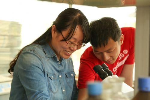 6.老师与同学在实验室观察卵胚胎发育情况