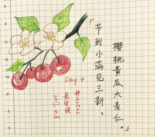 岳安琪作品 (2)
