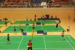我校在省大学生羽毛球锦标赛中再创新高
