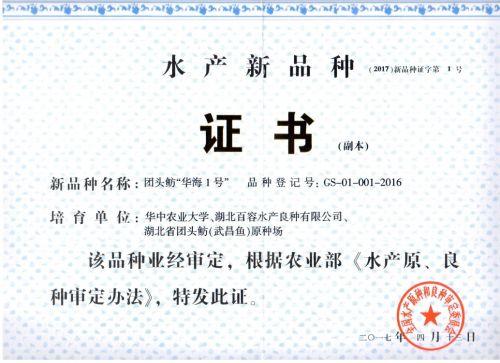 """团头鲂""""华海1号""""新品种证书"""