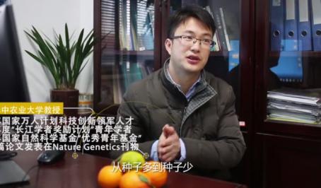 徐强 向全世界讲述柑橘的故事