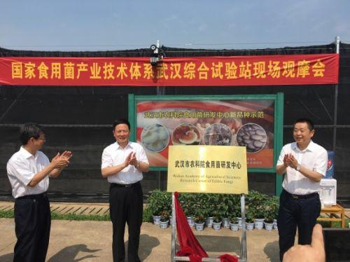 肖伏清厅长、龙良文副市长、吴大志书记揭牌(供图 马晓龙)
