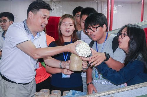 边银丙教授给同学们展示工厂化生产金针菇