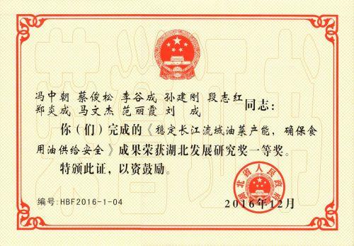 2016湖北发展研究奖一等奖-扫描件_副本