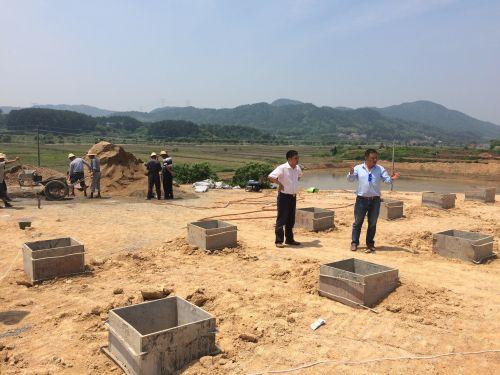 酷暑天气,工作队坚守一线协调推进农业生态园建设1
