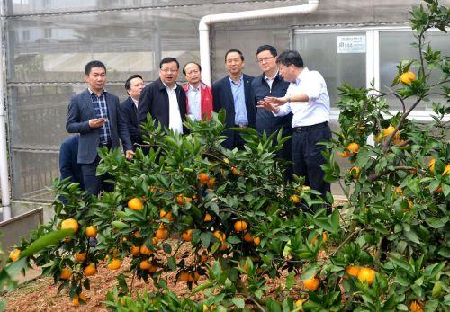 郭生练考察国家柑橘育种中心(供图:晓齐)_副本