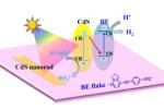 光催化太阳能转化研究取得新进展
