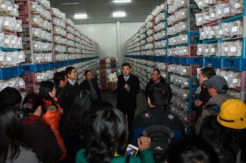 边银丙教授向青年教师们介绍现代化工厂