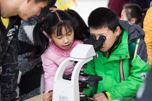 小朋友们利用显微镜观察斑马鱼鱼卵(学通社记者 彭雨格 摄)