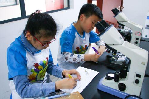 小朋友们认真完成实验记录(学通社记者 吴毅博摄)
