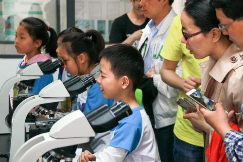 小朋友兴奋地观察着显微镜里的生物