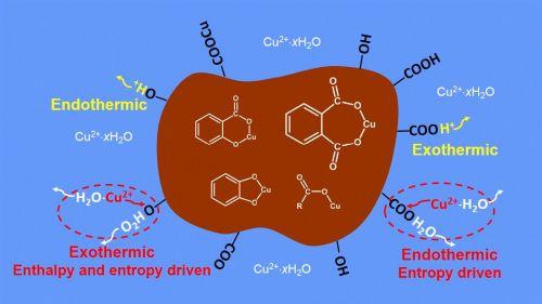 图1Cu在胡敏酸不同官能团上吸附的热力学特性及主要配位结构示意图(放置于核心提示后)