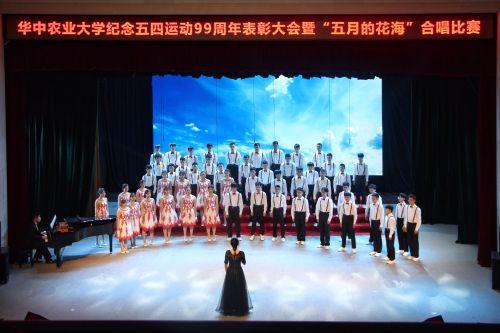 工学院《故乡的云》 学通社记者 陈滢双摄