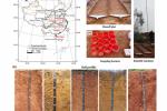 我校在土壤侵蚀地带性分异规律研究中取得新进展