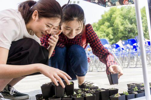 绿植领养活动现场,两个女孩子兴致勃勃挑选绿植(学通社记者 彭韵菲 摄)