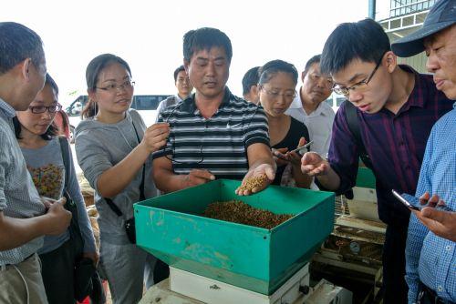 8-3潜江农业局毛爱国主任向青年教师介绍机械播种水稻流程