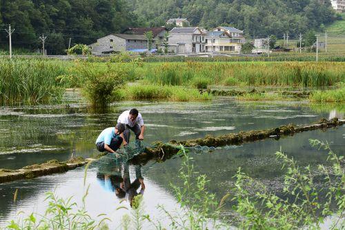 高翅在国硒冷水鱼公司查看水产品养殖情况