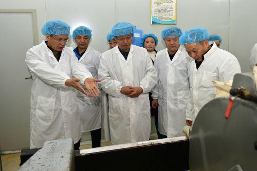 食科院刘睿教授在枸杞珍酒业介绍有关工艺