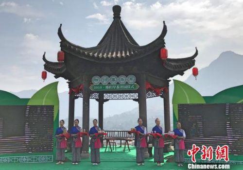 """秭归县举行""""2019早茶开园仪式"""" 董晓斌 摄"""