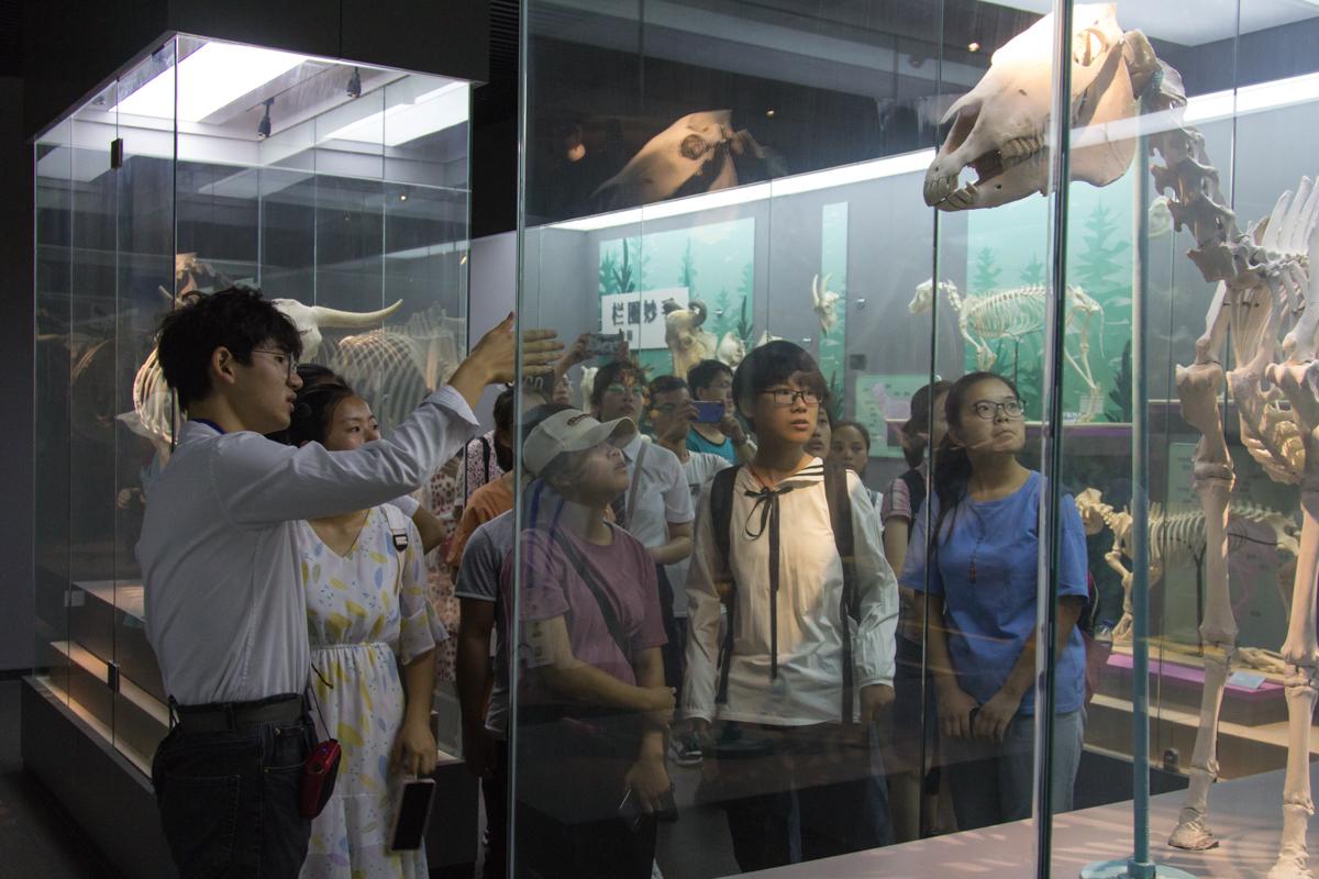 讲解员给同学们介绍动物的构造 学通社记者朱宸樟摄