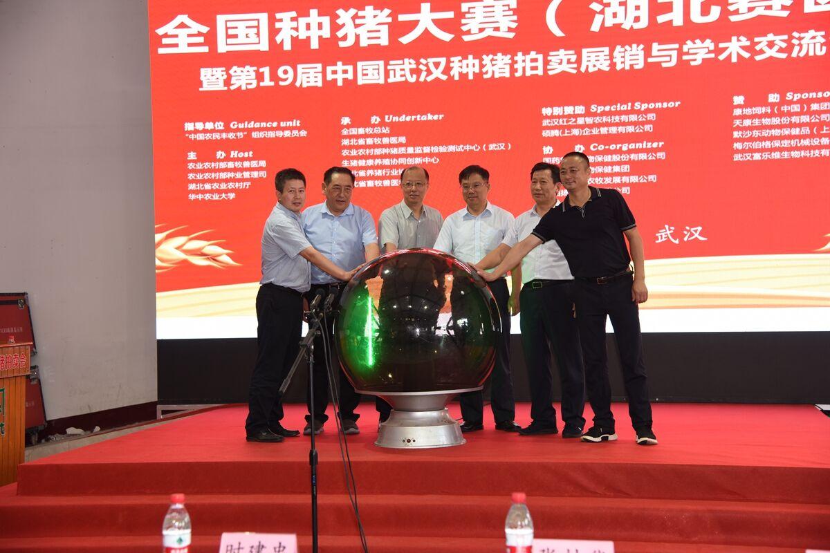 全国种猪大赛暨第19届中国武汉种猪拍卖会举行