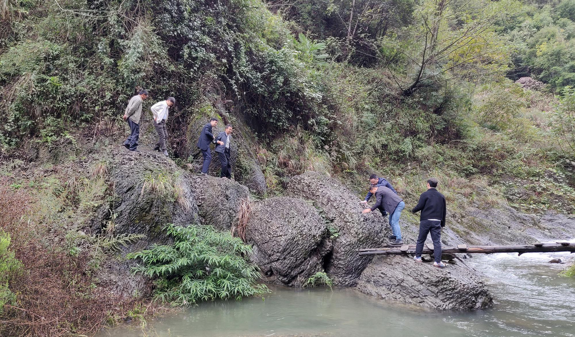 支部党员群众前往东门溪村枸杞种植地