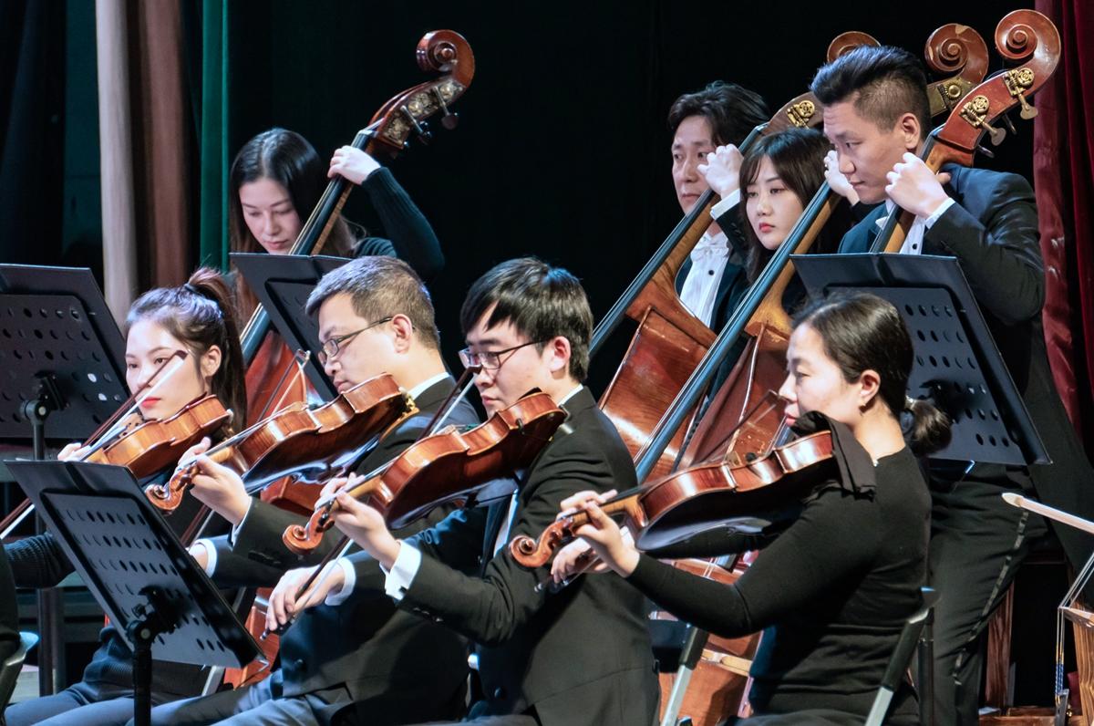 中提琴与低音贝斯手演奏【学通社记者 孟辰玥 摄】