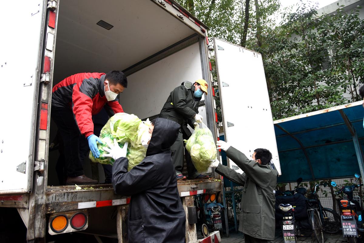 志愿者搬菜 (4)