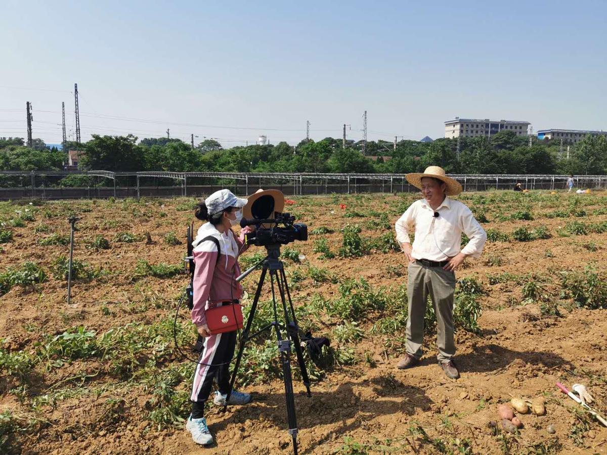 宋波涛教授在现代农业科技试验基地直播